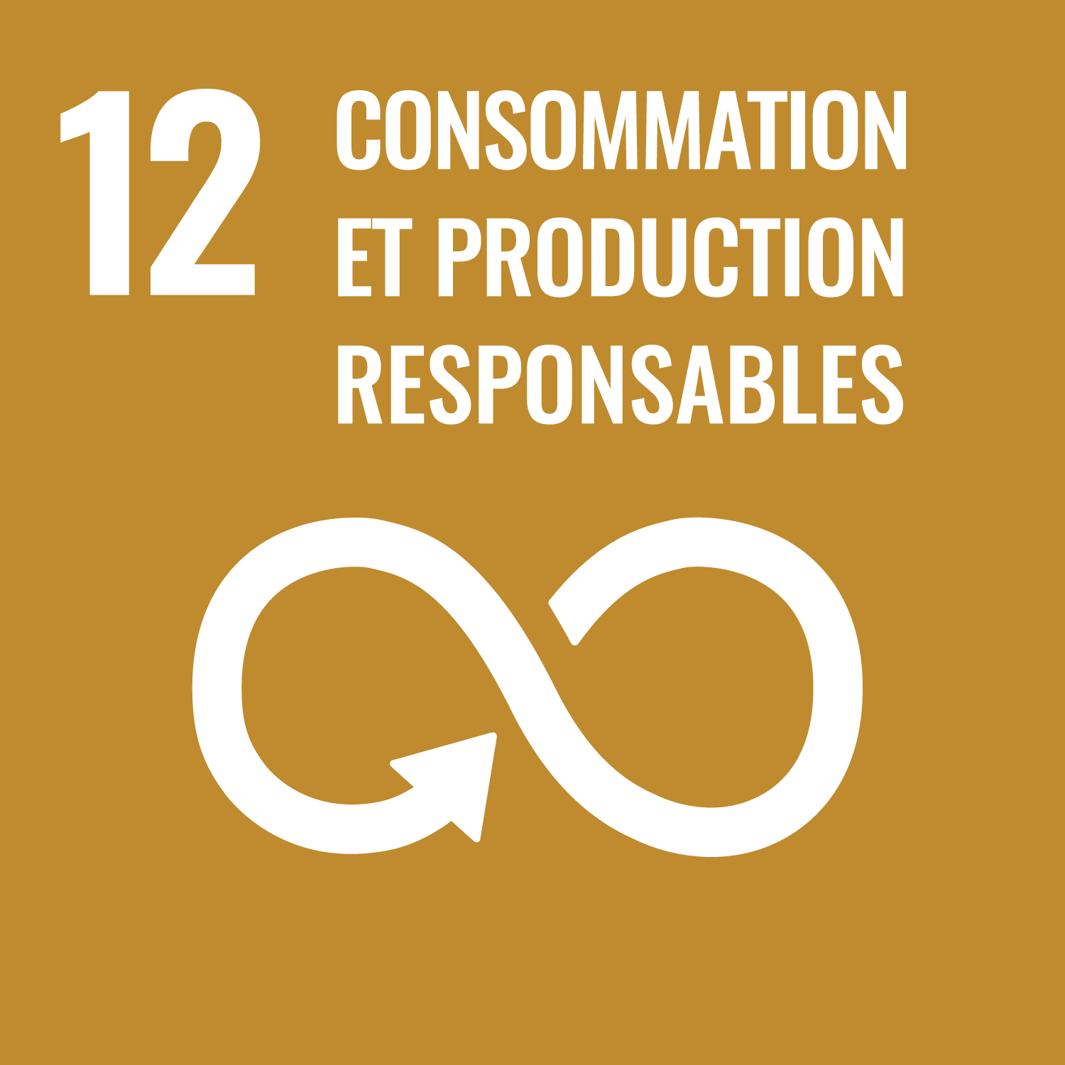RSE 12 Consommation production responsables