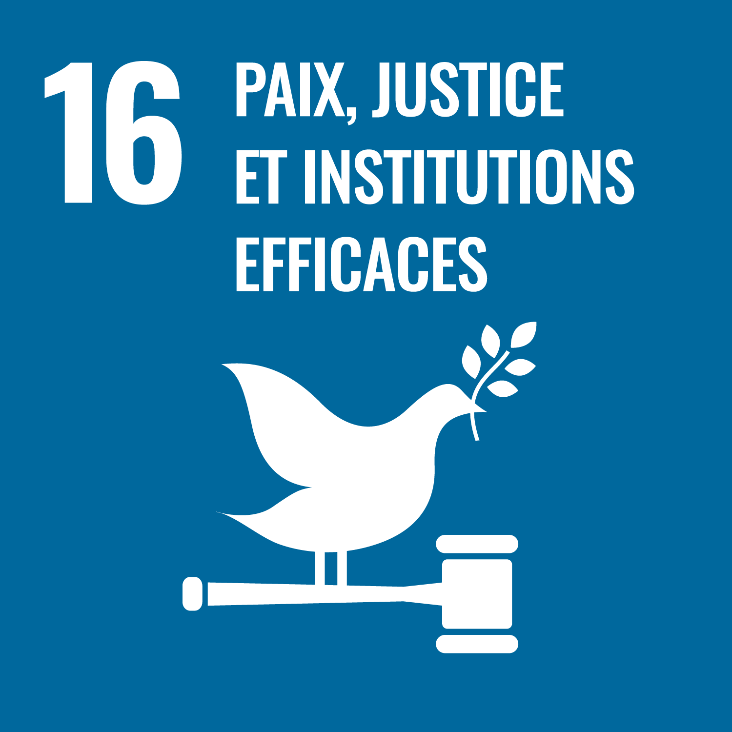 RSE 16 paix justice institutions efficaces