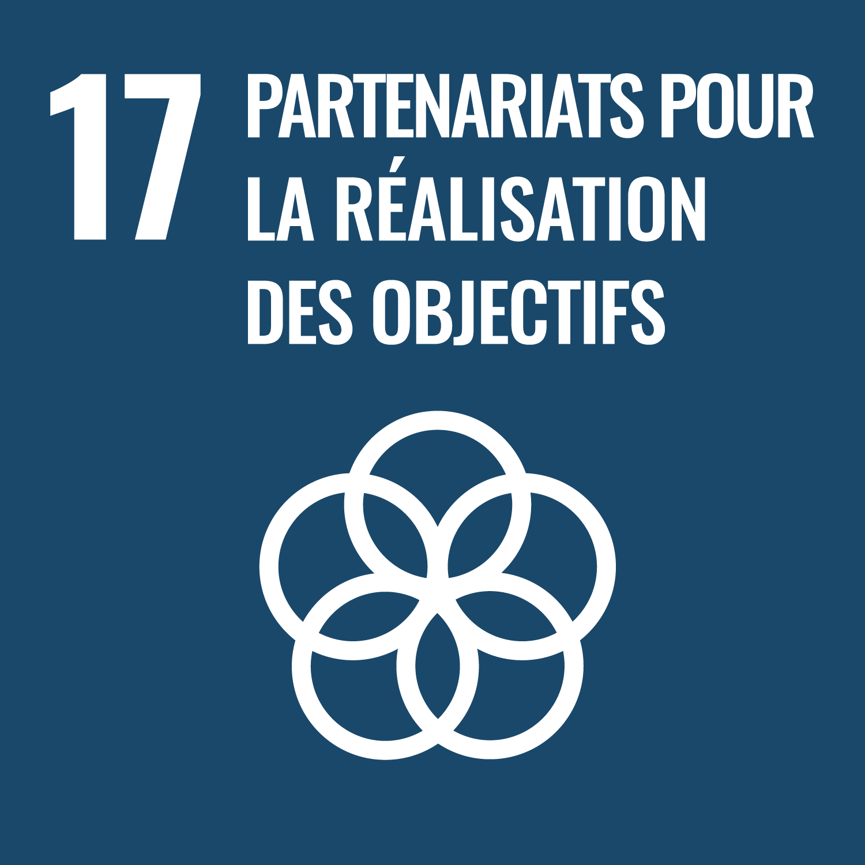 RSE 17 Partenariats pour realisation objectifs